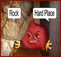 Rock and Hard Spot